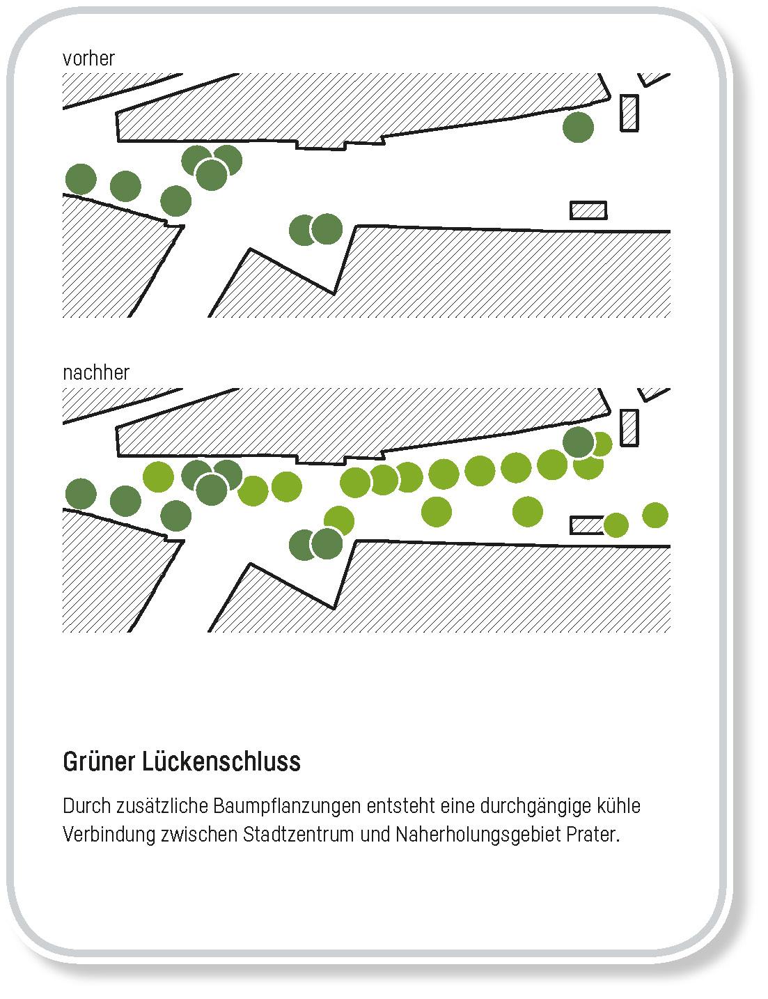 Bild zeigt, dass neue Bäume eine durchgehende Baumreihe erzeugen werden.